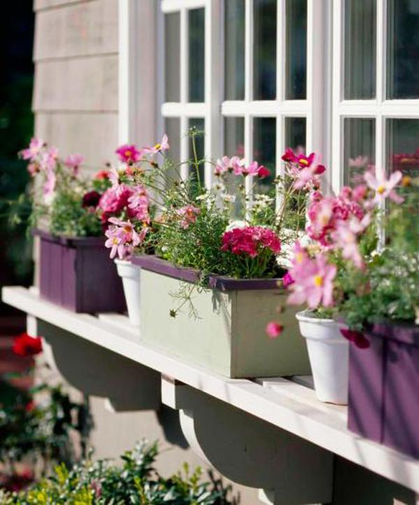 three-window-boxes-planters