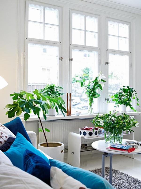 10 Ideas Garden in small space (4)