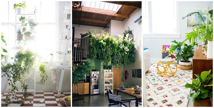 10 Ideas Garden in small space (6)