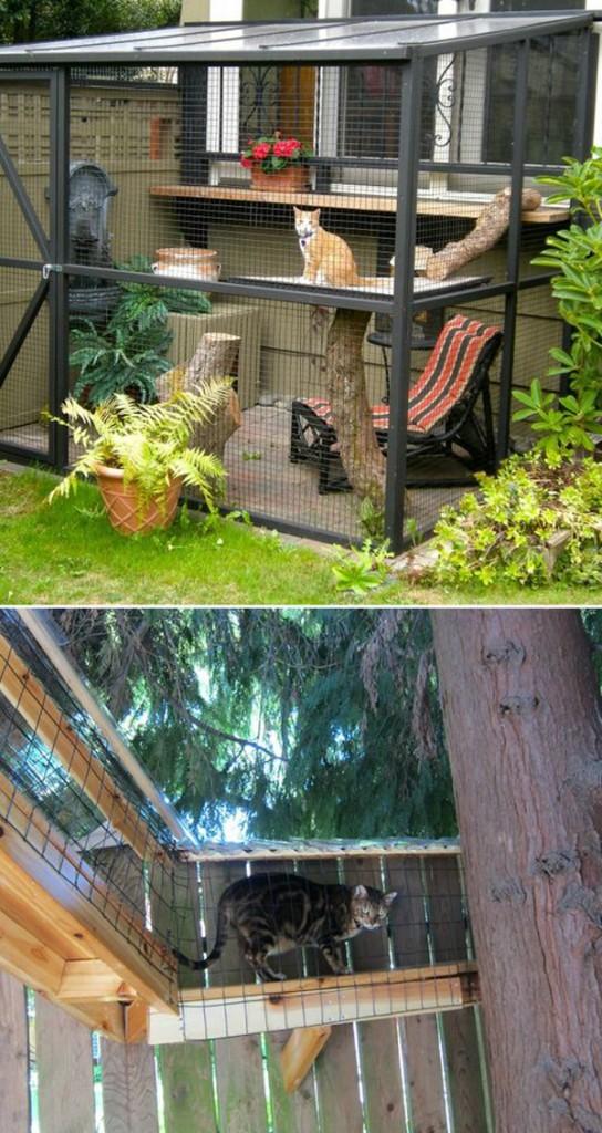 10 ideas cat furniture (4)