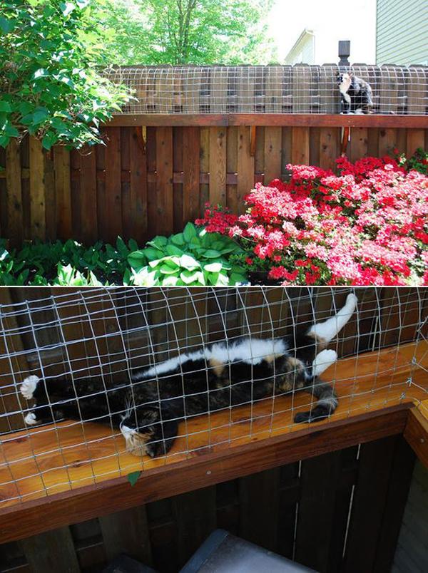 10 ideas cat furniture (5)