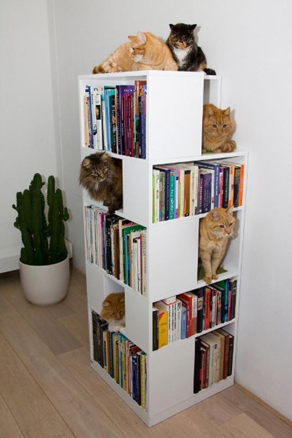 10 ideas cat furniture (6)