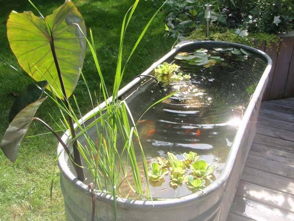 11 backyard fish pond ideas (5)