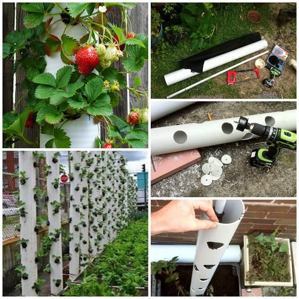 12 PVC Pipe Planters (5)