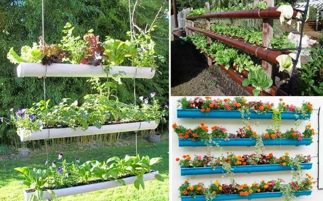 12-PVC-Pipe-Planters-cover_resize