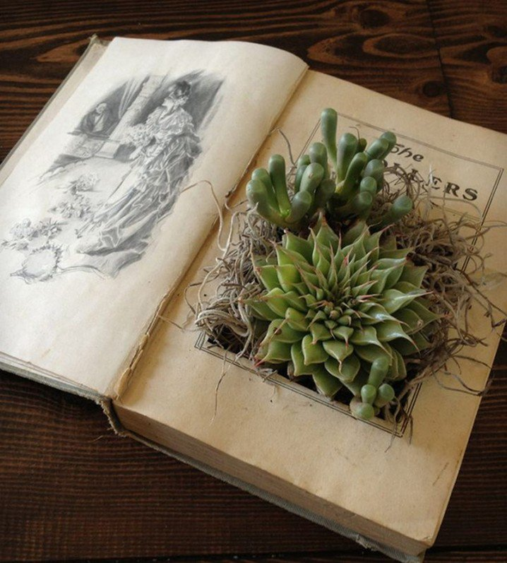 13 ideas to reuse old books for house decoration (5)