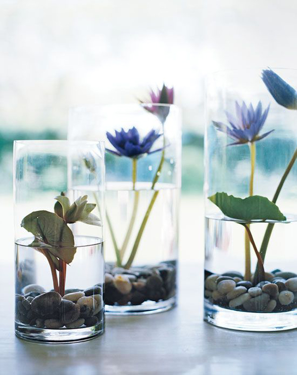15 ideas diy terrarium water garden (12)
