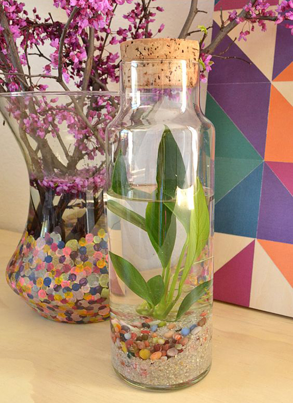 15 ideas diy terrarium water garden (4)