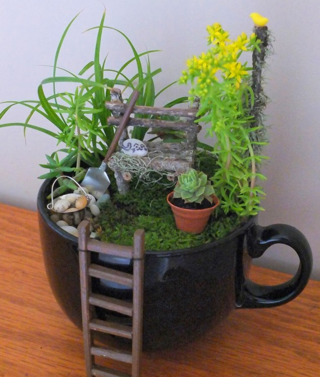 15-miniature-indoor-gardens (11)