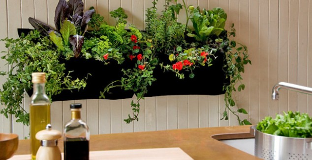 15-miniature-indoor-gardens (14)