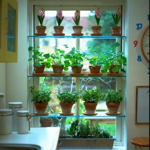 15-miniature-indoor-gardens (15)