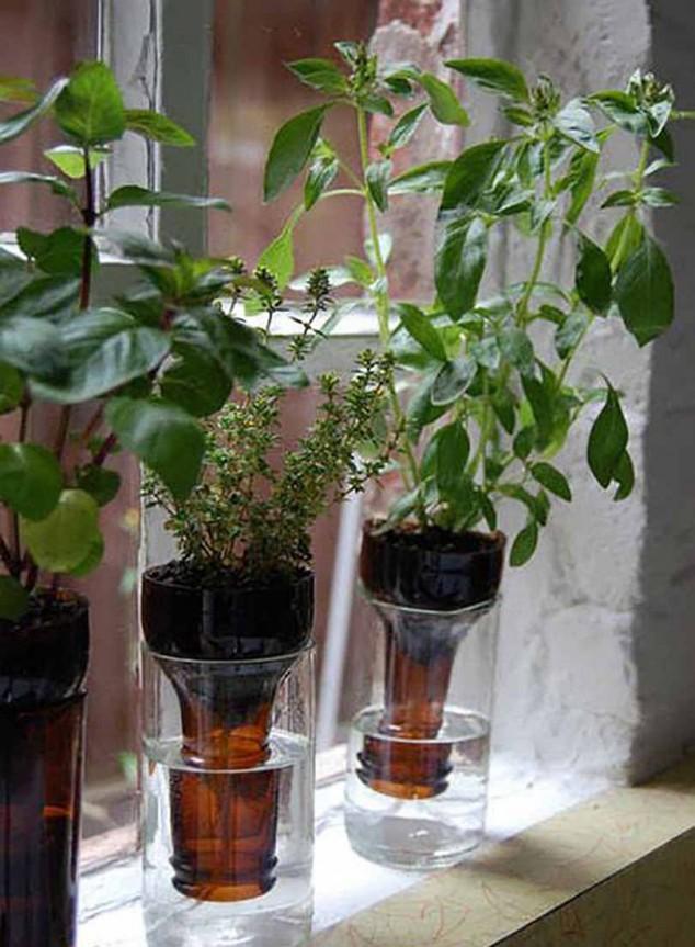 15-miniature-indoor-gardens (5)