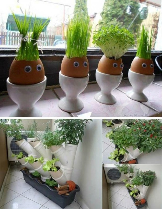 15-miniature-indoor-gardens (6)