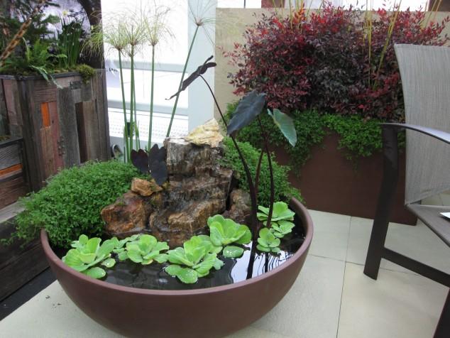 15-miniature-indoor-gardens (9)