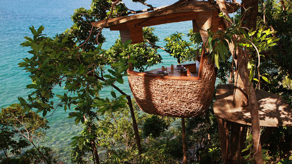 20 treehouse-with-childhood-dreams (12)