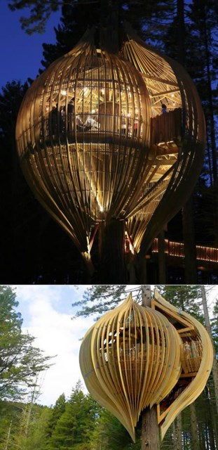 20 treehouse-with-childhood-dreams (14)