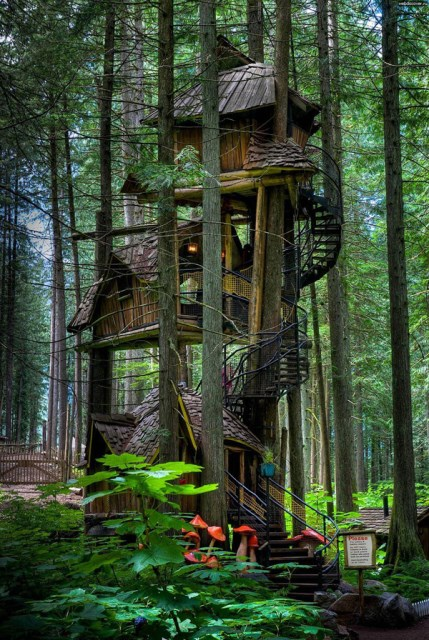 20 treehouse-with-childhood-dreams (19)