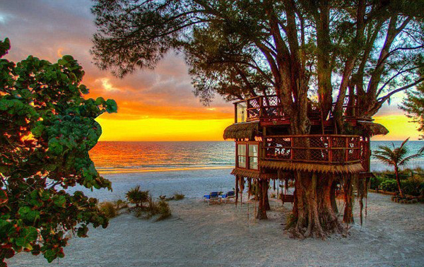 20 treehouse-with-childhood-dreams (20)