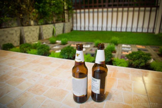 6.5 sqm frontyard townhouse garden review (22)