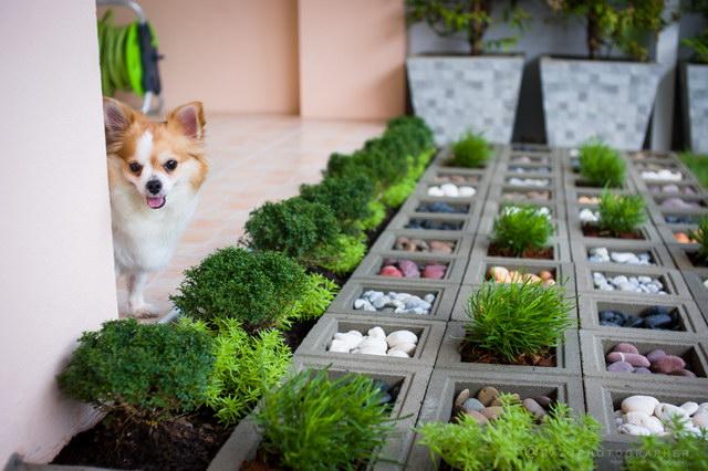 6.5 sqm frontyard townhouse garden review (8)