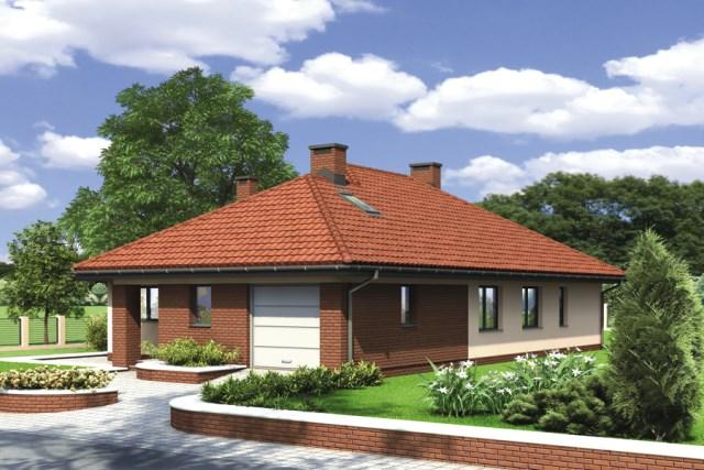 Classic contemporary home (2)