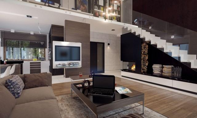 Compact Home Contemporary decor (1)
