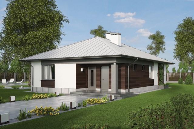 Contemporary House elegance shape (2)