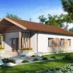 บ้านสวนร่วมสมัยขนาดเล็ก 3 ห้องนอนเล็ก มาพร้อมซุ้มไม้หน้าบ้านสวยงาม