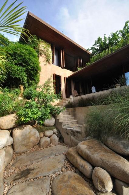 Cottage medium Tropical garden (8)