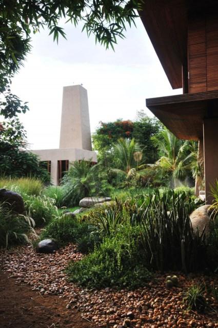 Cottage medium Tropical garden (9)