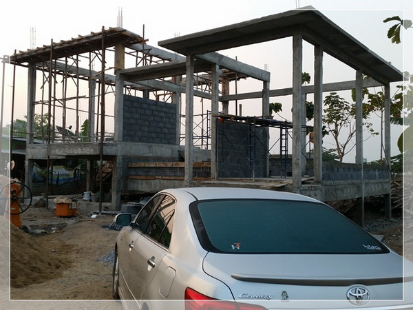 building modern house review (8)