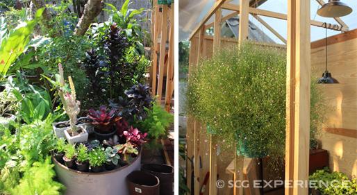 green house studio DIY (4)