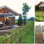 """วิถีสโลว์ไลฟ์ """"บ้านฟาร์มญี่ปุ่น"""" สัมผัสบรรยากาศอบอุ่น กับคุณลุงสุดชิลผู้รักการปลูกผักทำสวน"""