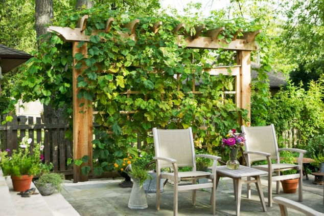 10-outdoor-structure ideas (8)