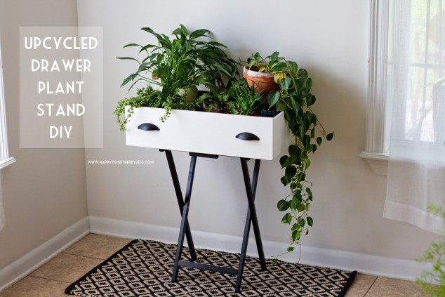 12 interior plant stand ideas (5)