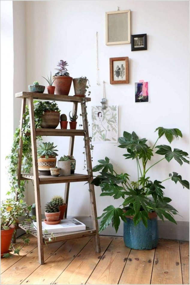 12 interior plant stand ideas (8)