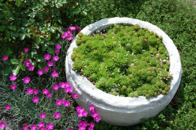 15 ideas for decorative garden with special details (6)