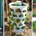 """รวม 15 ไอเดียปลูกพืชในรูปแบบ """"สวนผักแนวตั้ง"""" เหมาะสำหรับบ้านพื้นที่น้อย"""