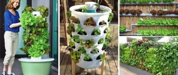 15 ideas for vertical garden (1)