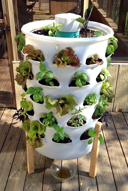 15 ideas for vertical garden (10)