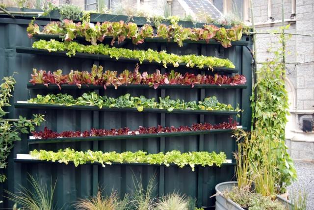 15 ideas for vertical garden (12)