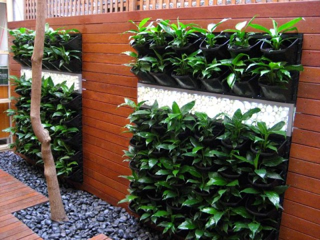 15 ideas for vertical garden (13)