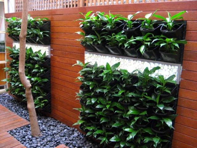 15 ideas for vertical garden (13)