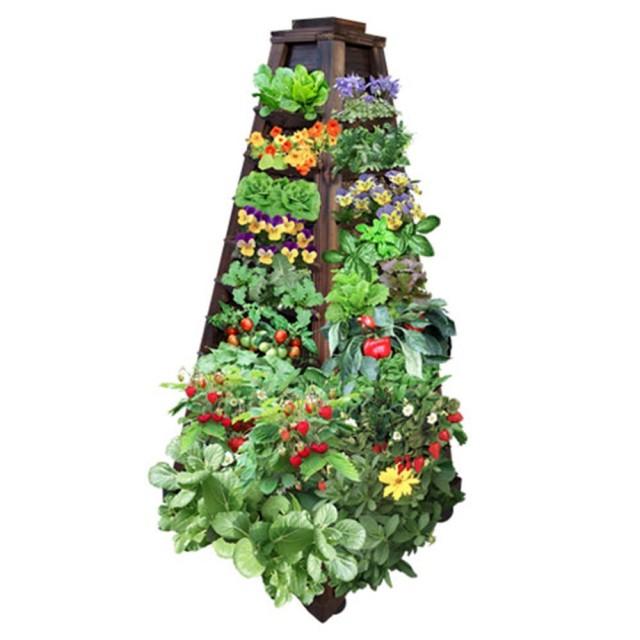 15 ideas for vertical garden (15)