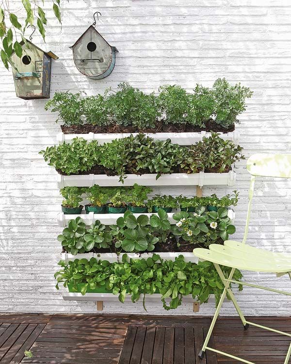 15 ideas for vertical garden (3)