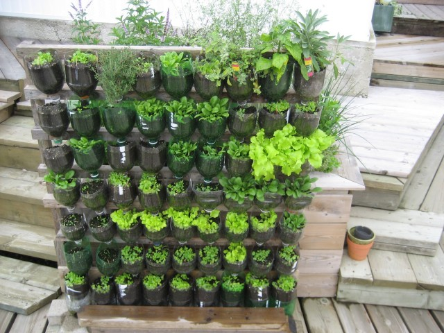 15 ideas for vertical garden (5)