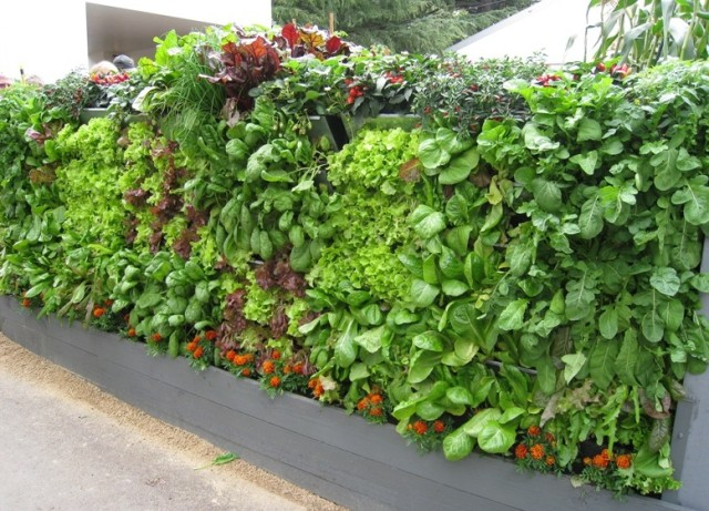 15 ideas for vertical garden (6)
