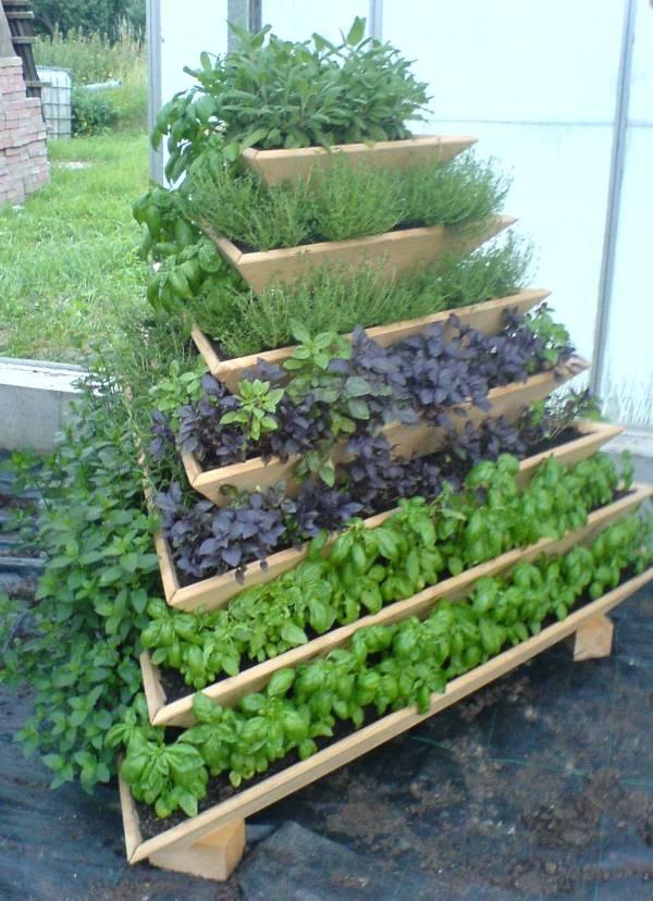 15 ideas for vertical garden (7)
