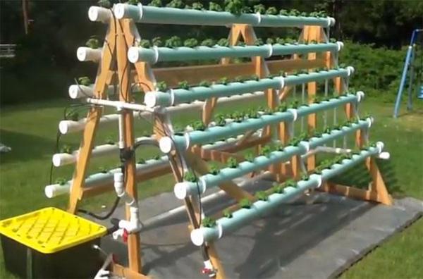 15 ideas for vertical garden (9)