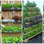 """15 ไอเดีย """"สวนผักแนวตั้ง"""" เทรนด์ปลูกผักประหยัดพื้นที่ ประดิษฐ์จากวัสดุหาง่าย"""